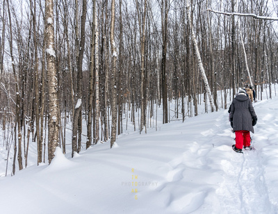 Snowshoeing at Mont Tremblant-1