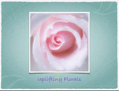Uplifting Florals (slideshow)