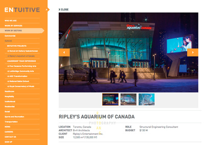Ripley's Aquarium (Corporate Website-1)