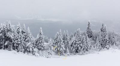 Misty Summit Panorama