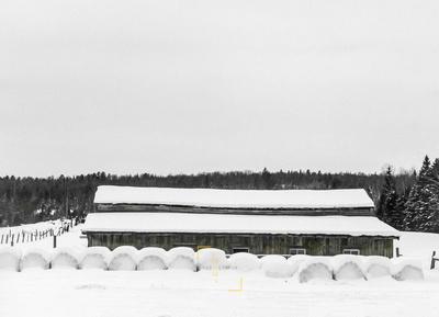 Winter Famhouse